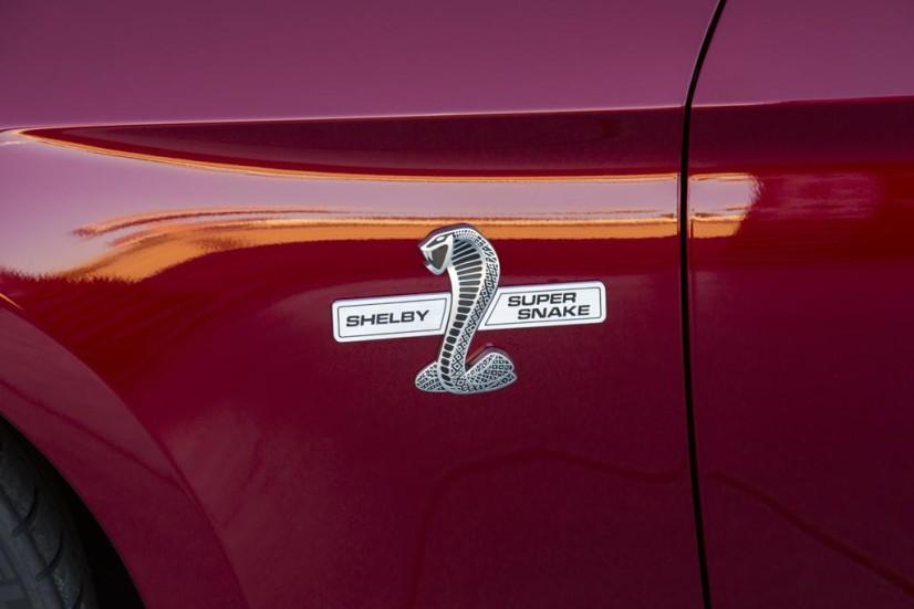 Ford-Mustang-Super-Snake-logo